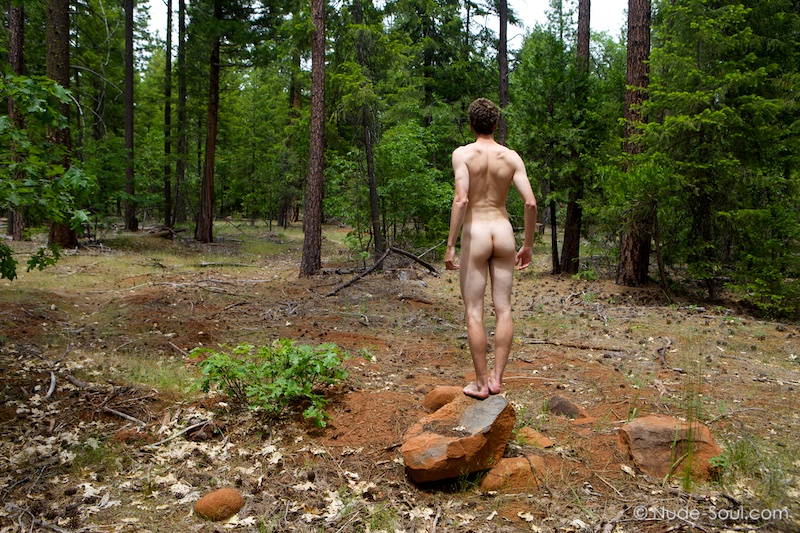 Deep in the Forest - Nature Au Natural